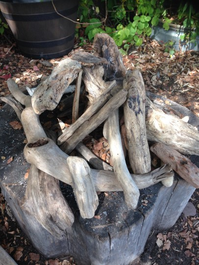 Penelope built a fairy house out of driftwood