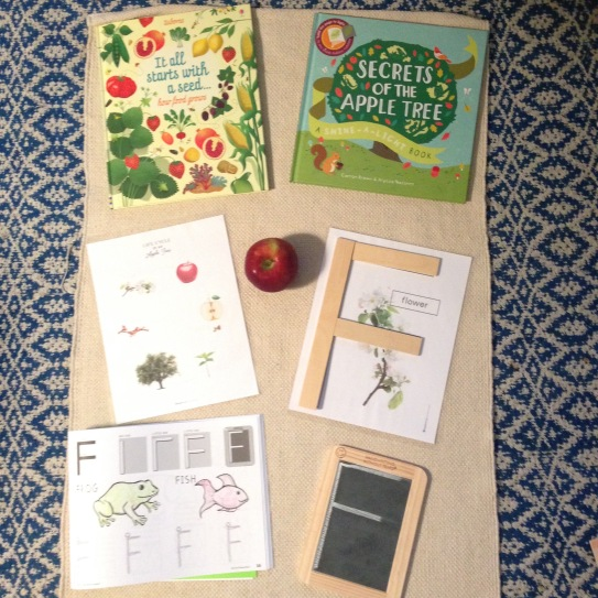 Resources from Playful Learning Teacher's Lounge, Handwriting Without Tears and Usborne Books And More